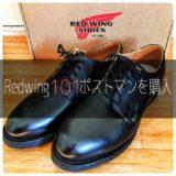redwing101