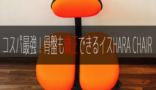 コスパ最強!腰痛改善や骨盤矯正に使えるオフィスチェア HARA CHAIR(ハラチェア)